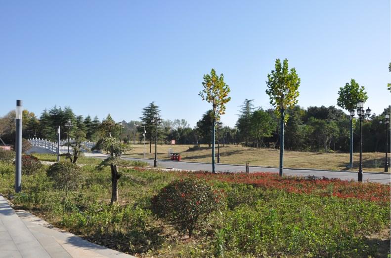禹州市森林植物园